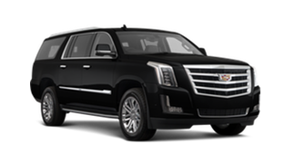 Business Class SUV or VAN
